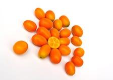 Kumquat Royaltyfria Bilder