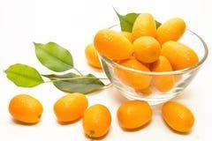 Kumquat Stock Foto