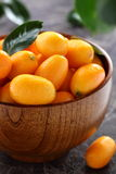 Kumquat. Royalty Free Stock Photos