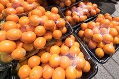 kumquat Royalty-vrije Stock Afbeeldingen