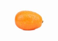 kumquat Stockfoto