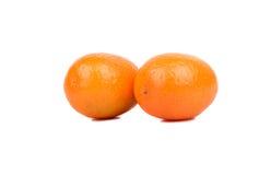 kumquat Stockbilder