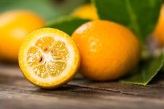 kumquat Lizenzfreie Stockfotos