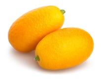 kumquat Fotos de archivo libres de regalías