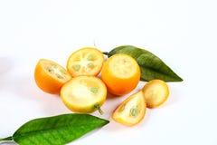 Kumquat. Is on a white background Royalty Free Stock Image