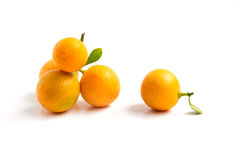 Kumquat anaranjado colocado en fondo del whte Fotos de archivo