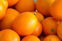 Kumquat. The close-up of ripe kumquat Royalty Free Stock Photo