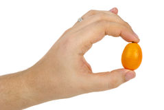Kumquat fruit in hand Royalty Free Stock Photo