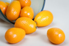Kumquat fruits Royalty Free Stock Photography