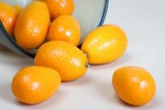 Kumquat fruits Royalty Free Stock Photography