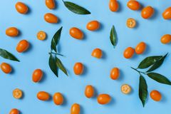 Kumquat fruits on a blue background. Top view royalty free stock photography