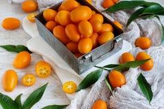 Kumquat fruits on a grey background. Close up stock image