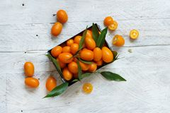 Kumquat fruits on a grey background. Kumquat fruits in a metal box on a grey background top view stock photography