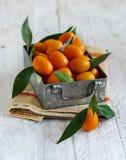 Kumquat fruits in a metal box. Close up royalty free stock photography