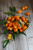 Kumquat fruits on a wooden background. Close up royalty free stock photo
