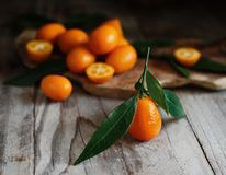 Kumquat fruits on a wooden background. Close up stock photos