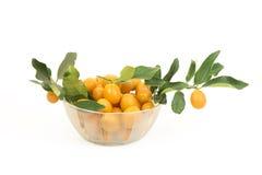 Kumquat Royalty Free Stock Image