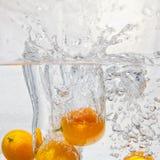 Kumquat i wody pluśnięcia Obraz Royalty Free