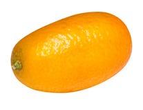Kumquat isolated on white background Royalty Free Stock Photo