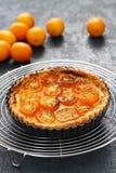 Kumquat tart, homemade dessert. Kumquat, its raw rind is sweet, with the flesh is sour like the lemon royalty free stock photography