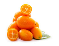 Kumquat with leaf Royalty Free Stock Photography