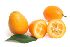 Kumquat with leaf Stock Images