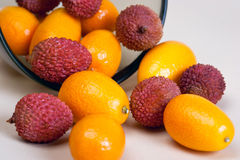 Kumquat and Litchi fruits Stock Images