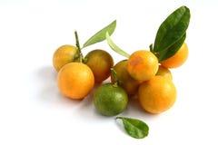 Kumquat op witte achtergrond Stock Afbeeldingen