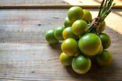 Kumquat organico Fotografia Stock