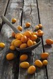 Kumquat su un cucchiaio di legno Immagine Stock