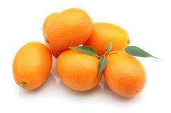kumquat swee Zdjęcie Stock