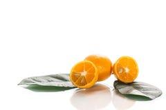 Kumquat Stock Photography