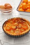 Kumquat tart, homemade dessert. Kumquat, its raw rind is sweet, with the flesh is sour like the lemon royalty free stock images