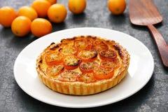 Kumquat tart, homemade dessert. Kumquat, its raw rind is sweet, with the flesh is sour like the lemon stock image