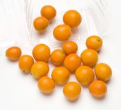 Kumquats Royalty Free Stock Image