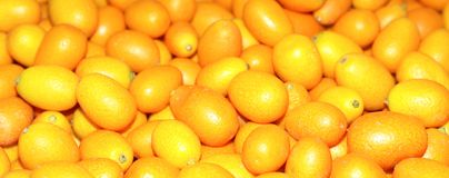 Kumquats Fotografia de Stock Royalty Free