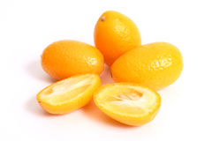 Kumquats. (Fortunella) are a type of citrus and can be eaten whole Royalty Free Stock Image