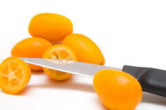 kumquats Royaltyfria Bilder