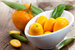 Kumquats in a bowl Royalty Free Stock Image