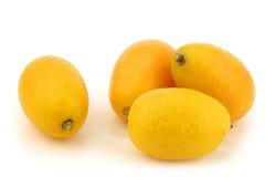 Kumquats(Citrus japonica) Stock Images