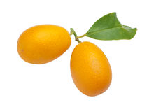 Kumquats close up Stock Photo