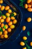Kumquats décorés sur le Tableau Photographie stock
