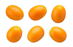 Kumquats isolated Royalty Free Stock Photo