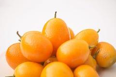 Kumquats - japonica do citrino Imagem de Stock