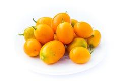 Kumquats - japonica do citrino Imagens de Stock Royalty Free