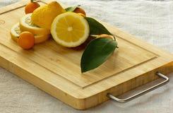 Kumquats och citron Fotografering för Bildbyråer