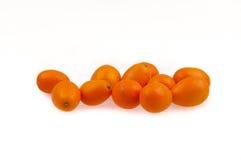 Kumquats op de witte achtergrond Stock Afbeeldingen