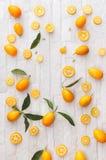 Kumquats organiques frais images libres de droits