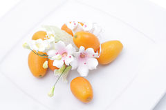 Kumquats y flor Imagen de archivo