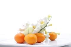 Kumquats y flor Foto de archivo libre de regalías